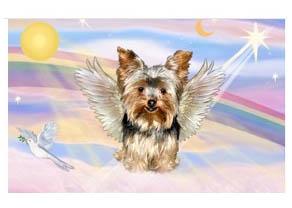 Image result for yorkshire terrier angel