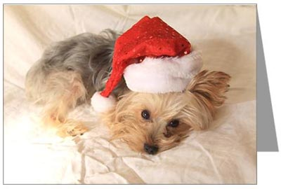 Yorkshire terrier christmas gifts