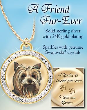 Yorkshire Terrier Charm pour afficher ou Chien Pet sur le thème Jewelry Designs