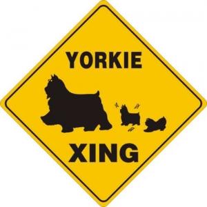 Yorkshire Terrier Flags Garden Decor